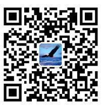 创业1043507812