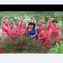 太丘社区舞蹈队